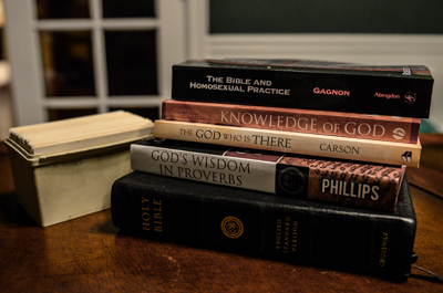 God's Wisdom on Proverbs by Dan Phillips is well worth reading.